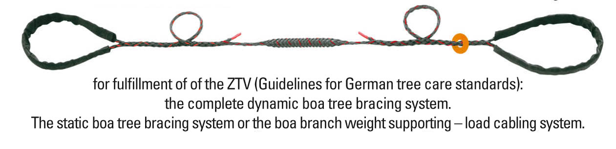 Arboa Tree Safety Tree Protection Tree Bracing System