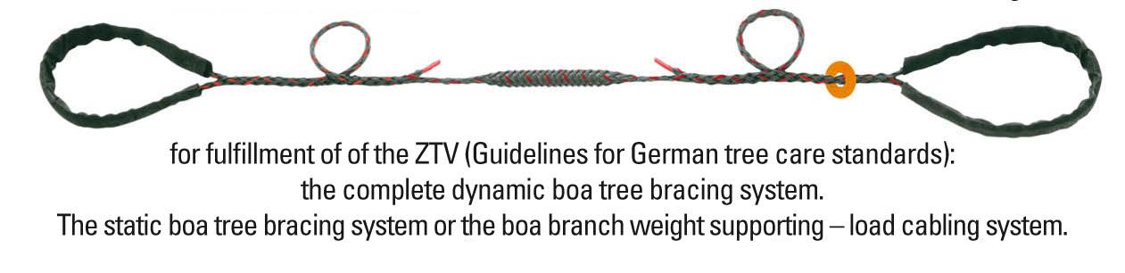 Arboa Tree Safety Tree Protection Tree Bracing System